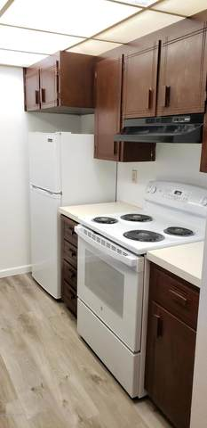 4433 San Ernesto Avenue #209B, Anchorage, AK 99508 (MLS #20-17285) :: Wolf Real Estate Professionals