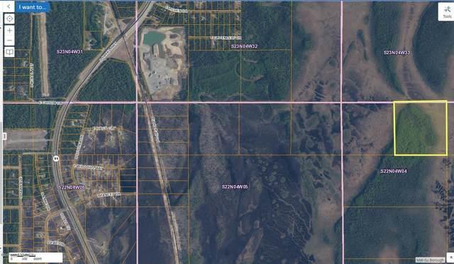 B003 No Road, Willow, AK 99688 (MLS #20-17467) :: RMG Real Estate Network | Keller Williams Realty Alaska Group