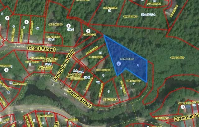 L8 Harris Street, Ketchikan, AK 99901 (MLS #20-17475) :: Wolf Real Estate Professionals