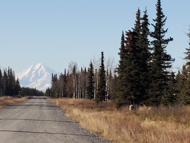 50256 Buoy Avenue, Kenai, AK 99611 (MLS #20-17480) :: Alaska Realty Experts