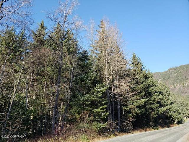 L4 4th Avenue, Haines, AK 99827 (MLS #20-1769) :: Wolf Real Estate Professionals