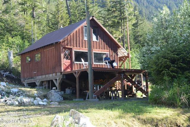 L1 B3 Excursion Inlet, Haines, AK 99827 (MLS #20-18084) :: Wolf Real Estate Professionals
