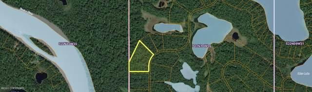 L 5-1 B15 Alder Vw Asls 80-137, Remote, AK 99000 (MLS #20-18086) :: Wolf Real Estate Professionals