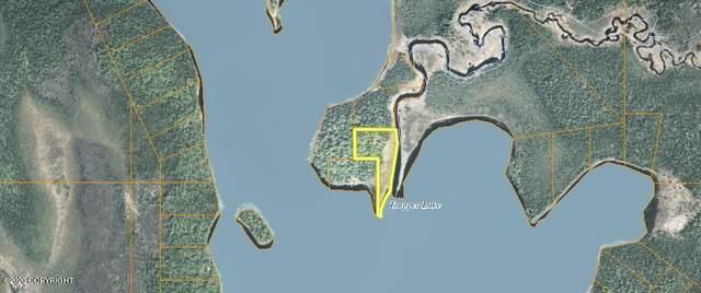 Tr 78 No Road, Trapper Creek, AK 99683 (MLS #20-18140) :: Wolf Real Estate Professionals