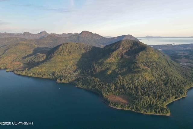 0000 Port Fidalgo Property, Valdez, AK 99000 (MLS #20-18334) :: RMG Real Estate Network | Keller Williams Realty Alaska Group