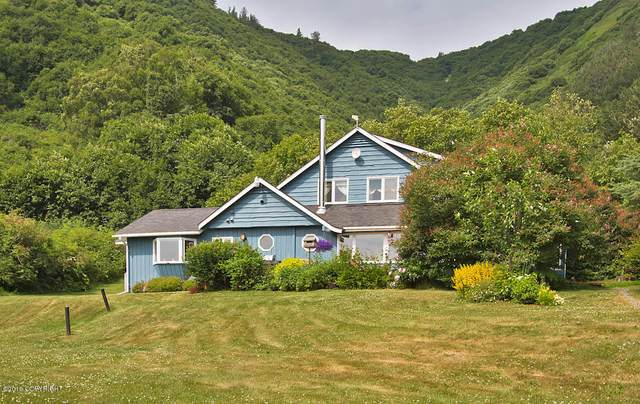 40015 Waterman Road, Homer, AK 99603 (MLS #20-18442) :: Wolf Real Estate Professionals