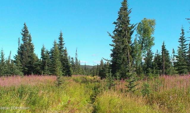 D34 Alaskan Wildwood Ranch(R), Anchor Point, AK 99556 (MLS #20-18503) :: Wolf Real Estate Professionals