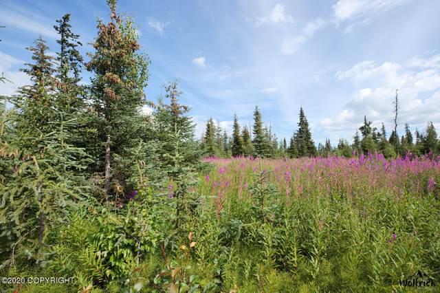 D25 Alaskan Wildwood Ranch(R), Anchor Point, AK 99556 (MLS #20-18505) :: RMG Real Estate Network | Keller Williams Realty Alaska Group