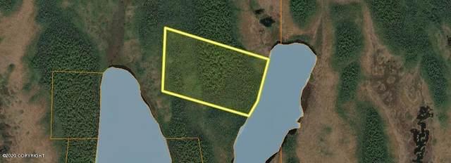 000 No Road, Trapper Creek, AK 99683 (MLS #20-18572) :: Wolf Real Estate Professionals