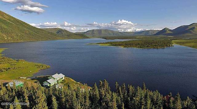 Remote Remote, Remote, AK 00000 (MLS #20-18583) :: Wolf Real Estate Professionals