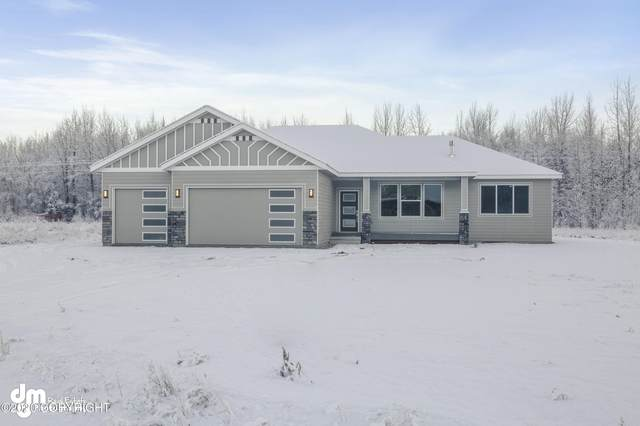 14799 E Lydia Circle, Palmer, AK 99645 (MLS #20-18597) :: Wolf Real Estate Professionals