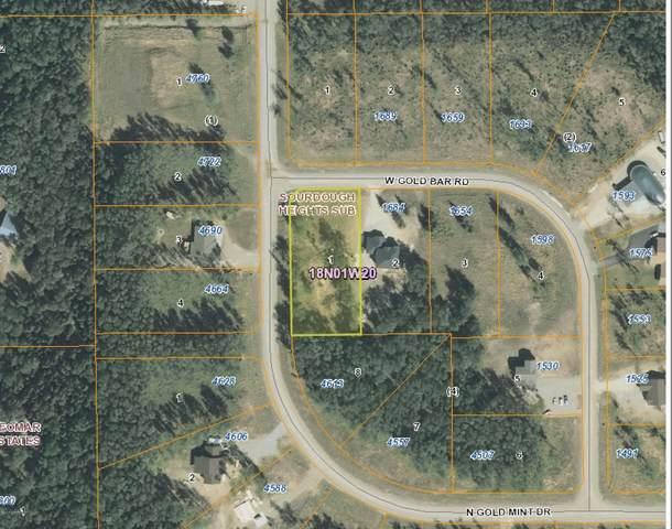 L1 B4 W Gold Bar Road, Wasilla, AK 99654 (MLS #20-2020) :: RMG Real Estate Network | Keller Williams Realty Alaska Group