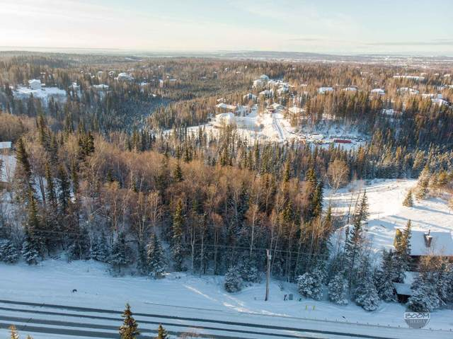 NHN Birch Road, Anchorage, AK 99507 (MLS #20-2082) :: RMG Real Estate Network | Keller Williams Realty Alaska Group