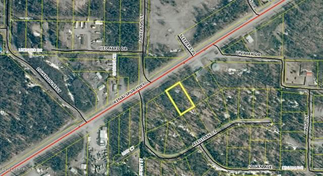 L3 Kenai Spur Highway, Nikiski/North Kenai, AK 99611 (MLS #20-2101) :: Roy Briley Real Estate Group