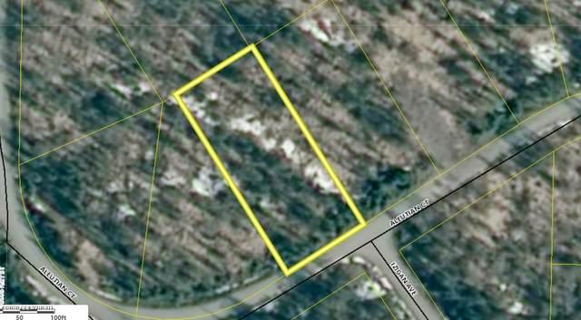 L8 Aleutian Court, Nikiski/North Kenai, AK 99611 (MLS #20-2104) :: Roy Briley Real Estate Group