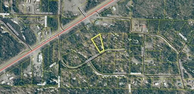 L11 Aleutian Court, Nikiski/North Kenai, AK 99611 (MLS #20-2105) :: Roy Briley Real Estate Group