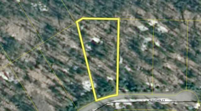 L12 Aleutian Court, Nikiski/North Kenai, AK 99611 (MLS #20-2106) :: Roy Briley Real Estate Group