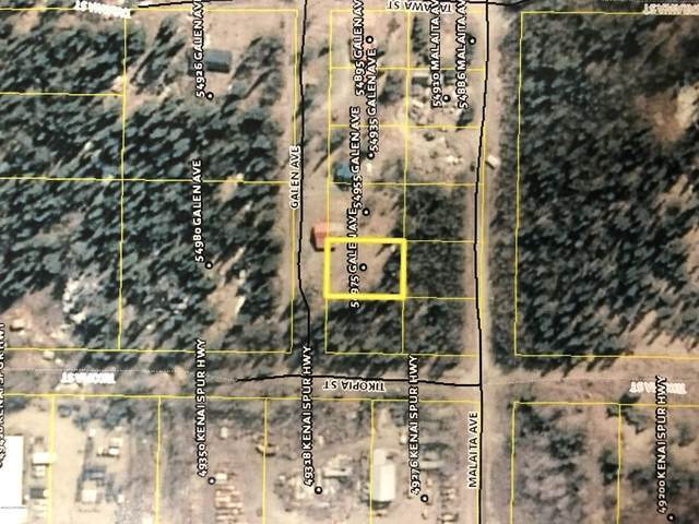 54975 Galen Avenue, Nikiski/North Kenai, AK 99611 (MLS #20-2134) :: Roy Briley Real Estate Group