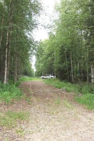 9926 N Rainbow Shores Road, Willow, AK 99688 (MLS #20-2181) :: RMG Real Estate Network | Keller Williams Realty Alaska Group