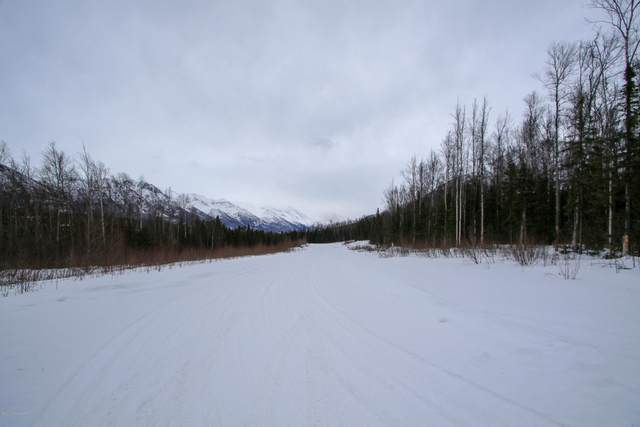 nsn Eagle Pointe Ph 10 Blk 6 Lt 89, Eagle River, AK 99577 (MLS #20-2231) :: Roy Briley Real Estate Group