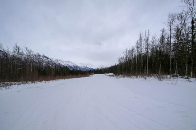 nsn Eagle Pointe Ph 12 Blk 6 Lt 77, Eagle River, AK 99577 (MLS #20-2233) :: Roy Briley Real Estate Group