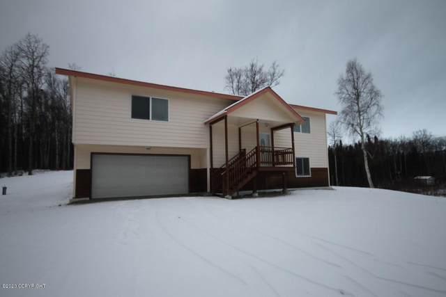 5700 E Seminole Circle, Wasilla, AK 99654 (MLS #20-2330) :: Alaska Realty Experts