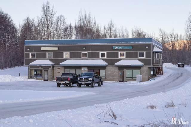 11921 E Palmer-Wasilla Highway, Palmer, AK 99645 (MLS #20-2398) :: Roy Briley Real Estate Group