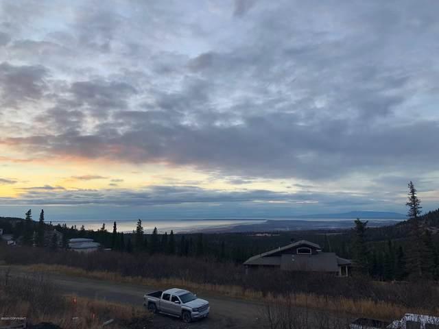 8900 Cinerama Circle, Anchorage, AK 99516 (MLS #20-2423) :: Wolf Real Estate Professionals