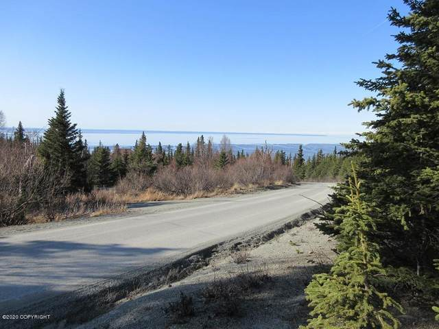 L1 Ashland Drive, Anchorage, AK 99516 (MLS #20-2496) :: Wolf Real Estate Professionals