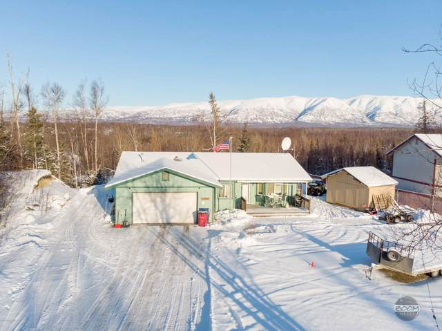 3000 N Snow Goose Drive, Wasilla, AK 99654 (MLS #20-2530) :: Wolf Real Estate Professionals