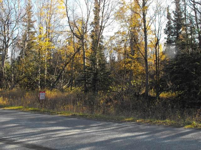 L13 B1 Upper Dearmoun Road, Anchorage, AK 99516 (MLS #20-2532) :: Wolf Real Estate Professionals