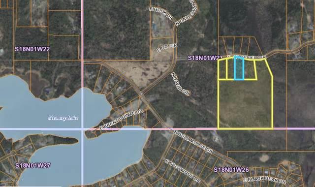1948 E Ridgeview Drive, Wasilla, AK 99654 (MLS #20-2552) :: Wolf Real Estate Professionals