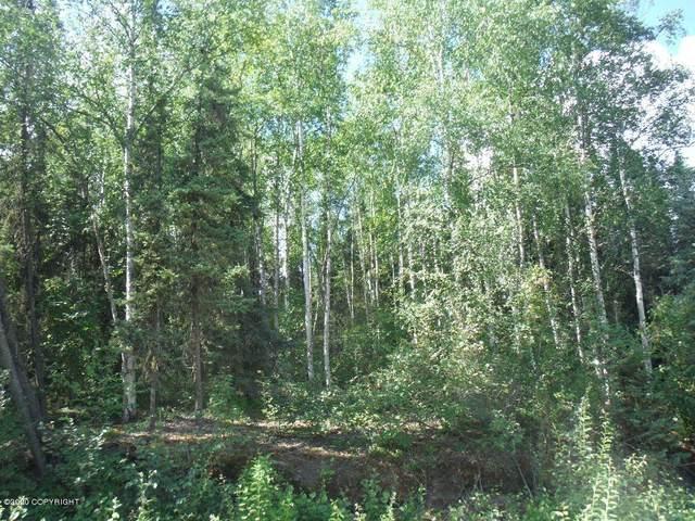 1976 Pandora Drive, Fairbanks, AK 99709 (MLS #20-2608) :: Wolf Real Estate Professionals