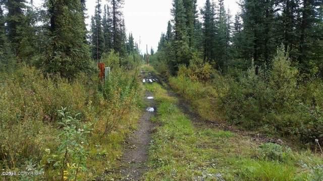 Mi 138.5 Glenn Highway, Glennallen, AK 99588 (MLS #20-2611) :: Wolf Real Estate Professionals