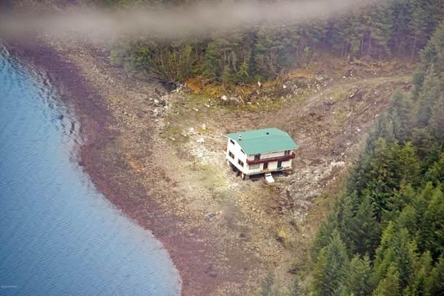 Tract G-1 Marble Island, Naukati Bay, AK 99000 (MLS #20-2629) :: Synergy Home Team