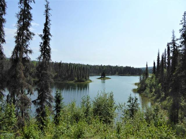 26783 S Mastodon Road, Talkeetna, AK 99676 (MLS #20-2731) :: RMG Real Estate Network | Keller Williams Realty Alaska Group
