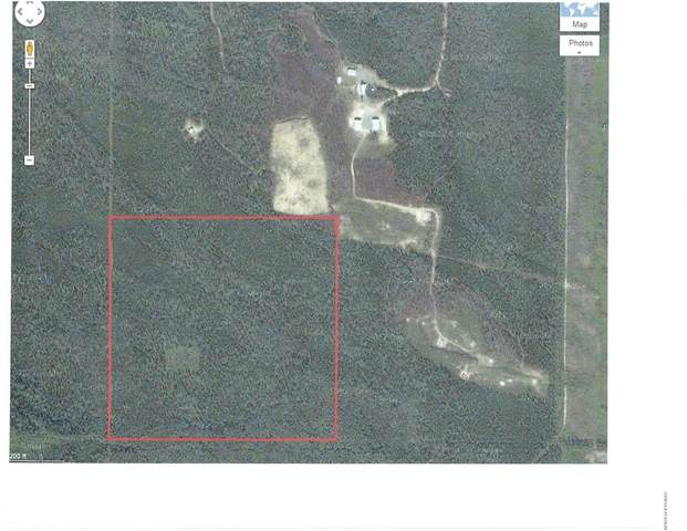Tr L No Road, Clear, AK 99704 (MLS #20-2733) :: Wolf Real Estate Professionals