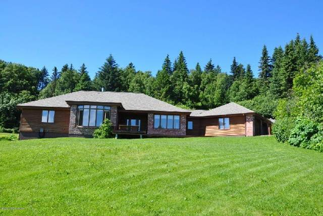 5025 East Hill Road, Homer, AK 99603 (MLS #20-2753) :: Wolf Real Estate Professionals