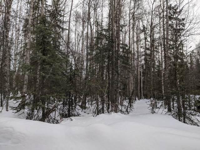 17172 E Trapper George Circle, Talkeetna, AK 99676 (MLS #20-3090) :: RMG Real Estate Network | Keller Williams Realty Alaska Group