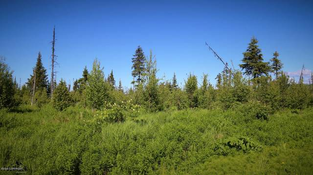 C25 Alaskan Wildwood Ranch(R), Anchor Point, AK 99556 (MLS #20-3241) :: RMG Real Estate Network | Keller Williams Realty Alaska Group