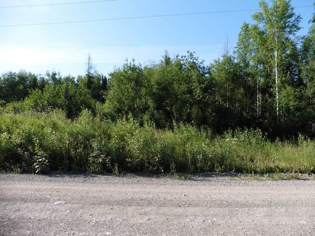 11734 W Ballyshannon Drive, Houston, AK 99694 (MLS #20-3396) :: RMG Real Estate Network | Keller Williams Realty Alaska Group