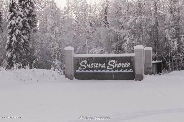 54730 S Salmon Run Road, Willow, AK 99688 (MLS #20-3488) :: RMG Real Estate Network | Keller Williams Realty Alaska Group