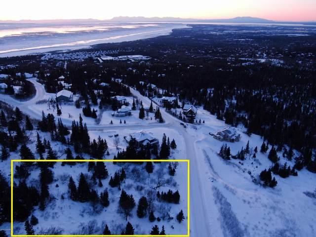 L11,12 B1 Sandpiper Drive, Anchorage, AK 99516 (MLS #20-3553) :: RMG Real Estate Network | Keller Williams Realty Alaska Group