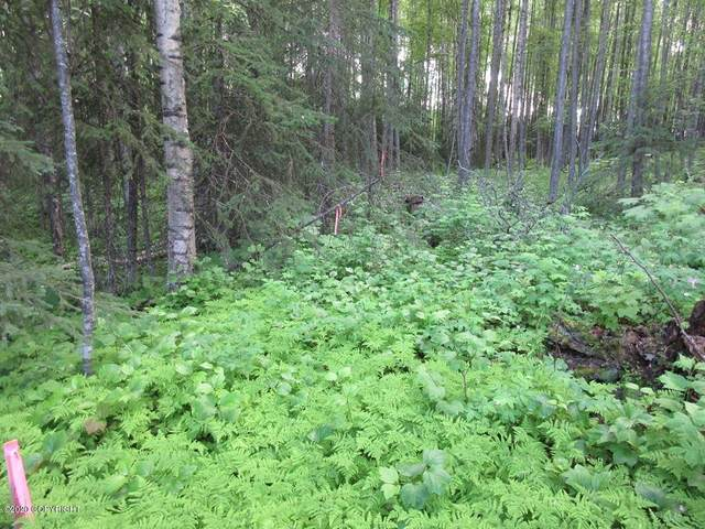 Lot 7 S New Sandee Circle, Big Lake, AK 99652 (MLS #20-3690) :: RMG Real Estate Network | Keller Williams Realty Alaska Group