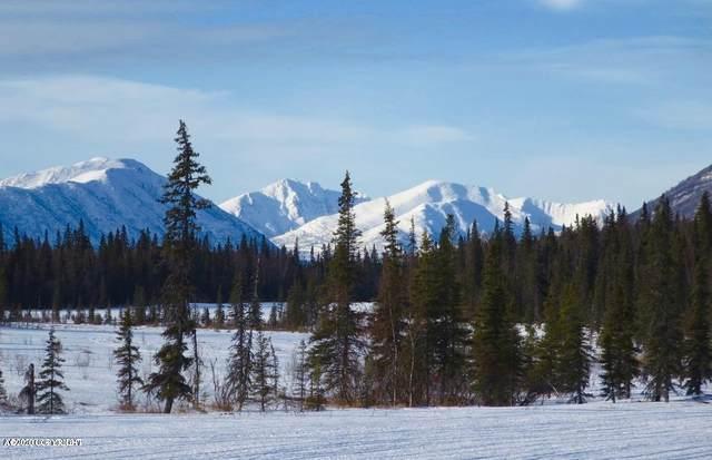 000 Warehouse Mtn Road, Dillingham, AK 99576 (MLS #20-3751) :: Alaska Realty Experts