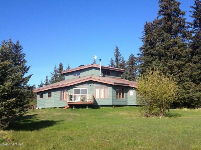 41030 Solstice Drive, Homer, AK 99603 (MLS #20-3849) :: Synergy Home Team