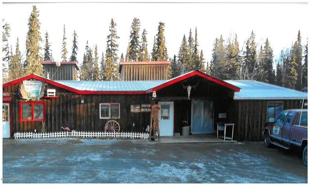 49190 Tote Road, Soldotna, AK 99669 (MLS #20-3892) :: Wolf Real Estate Professionals