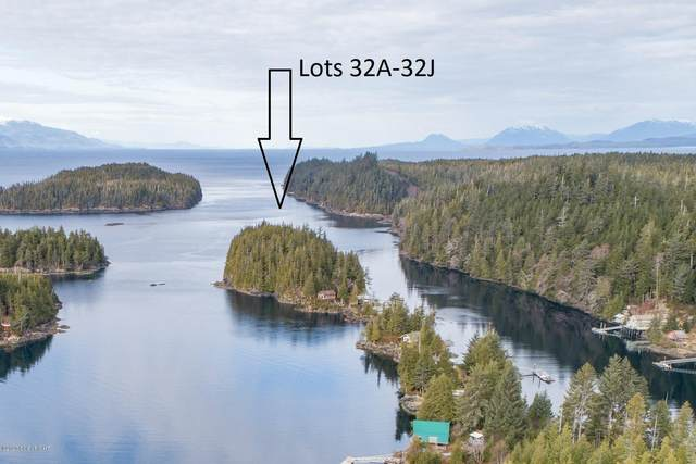 L32B Rainbow Island, Meyers Chuck, AK 99903 (MLS #20-4266) :: Wolf Real Estate Professionals
