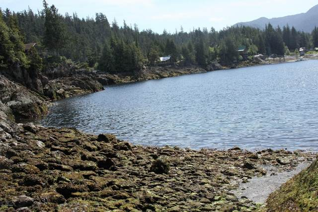 L32J Rainbow Island, Meyers Chuck, AK 99903 (MLS #20-4276) :: Wolf Real Estate Professionals