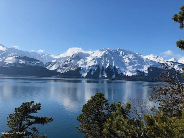 Tr A Mud Bay Road, Haines, AK 99827 (MLS #20-4316) :: Wolf Real Estate Professionals